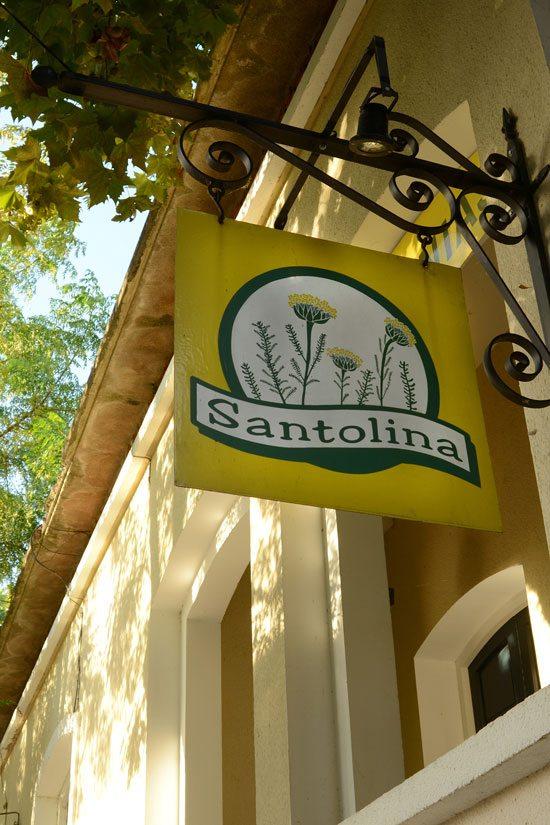 santolina1