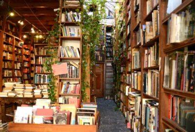 """""""Podés armar la vida de las personas en función de sus bibliotecas"""""""