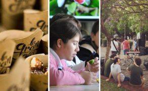 Feria Ecológica en Punta del Este, Museos en la Noche y Árboles y Frutos Nativos con Laura Rosano