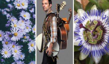 Visitas Guiadas en el Botánico, Kevin Johansen + The Nada y Flores de Mburucuyá de la Sierra
