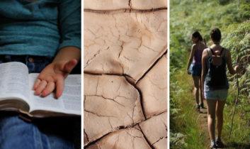 Día Mundial de la Poesía; Taller de Geoterapia y Retiro Detox en selva amazónica