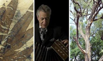 Taller de Ecoprint, Gala 100 años de La Cumparsita y Paseos Montevideanos